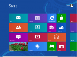 Windows 8 Release Preview - Metro User Interface Screen